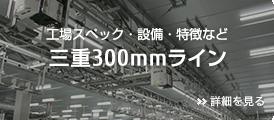 三重300mmライン